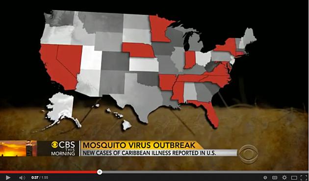 Mosquito Virus